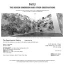 Fei Li The Hidden Dimension and Other Observations